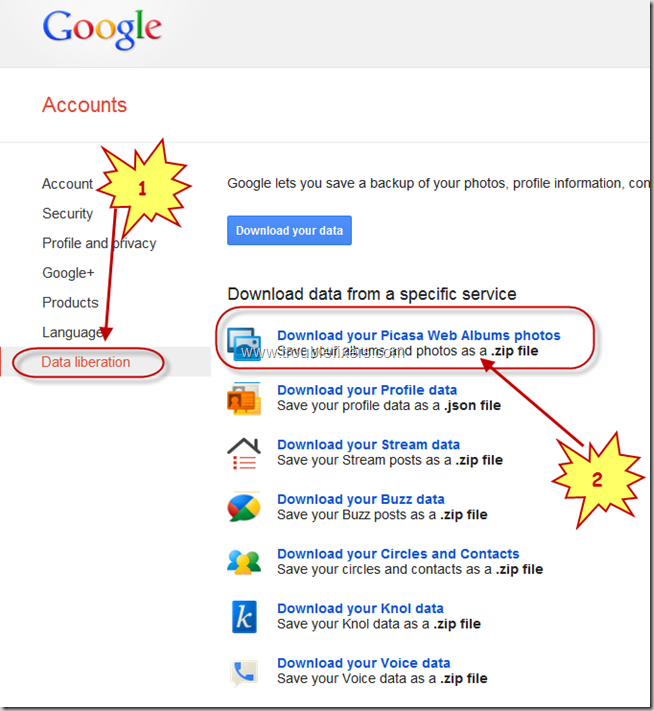 Backup Google Picasa Pictures And Videos (3)