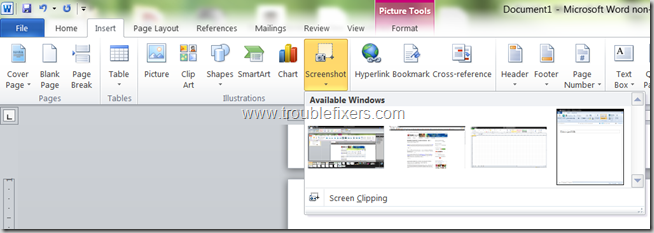 Include Screen Shots In MS Office 2010 (7)