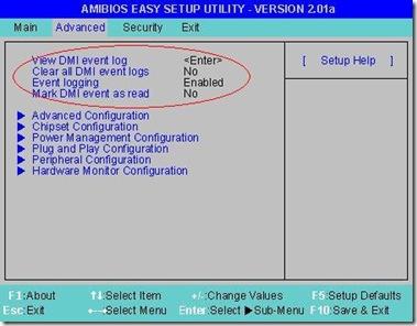 DMI options in BIOS