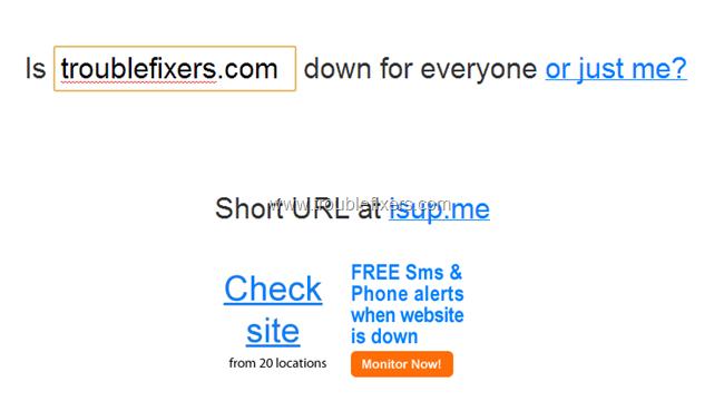 check website status